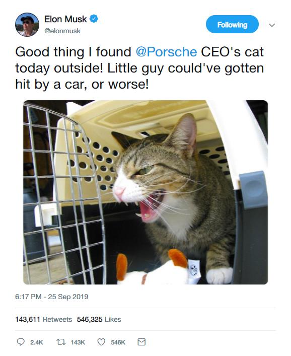 musk cat tweet